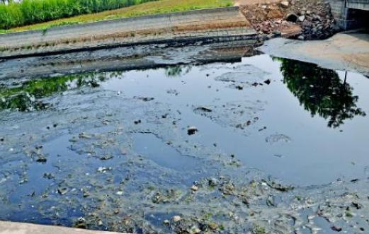 关于养殖污水处理技术的研究