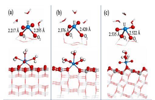 揭示U(VI)在不同晶面的吸附、催化还原差异及相关机理