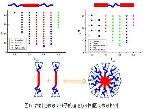 含刚性嵌段的高分子有序聚集态结构形成的微观机理