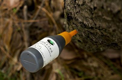 《松材线虫病疫区和疫木管理办法》修订新版