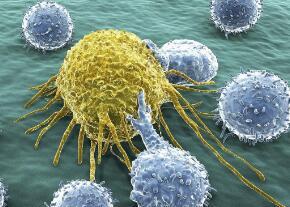 癌细胞可促使周围正常细胞发生癌变