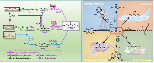 生物质发酵液转化新策略:ABE溶液的高效率、高选择性制备化学品4-庚酮