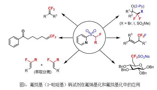 首例铁催化的对芳烃或杂芳烃的高效二氟烷基化反应