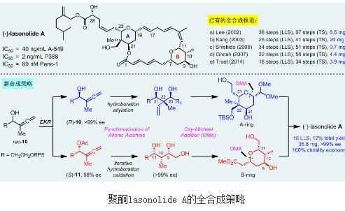 聚酮lasonolide A的全合成策略:对映选择性全合成