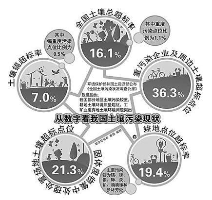 土壤污染修复产业发展现状与评价标准