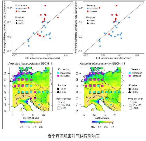 27个树种的霜冻危害变化情况进行分析