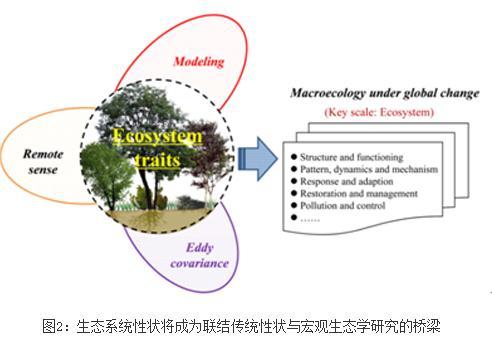 生态系统性状(Ecosystem traits)原创性新概念