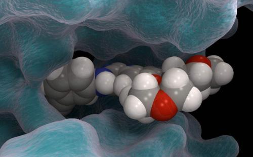 ?吴正岩课题组与邹多宏团队合作,制备出可智能协同抗癌的新型纳米材料