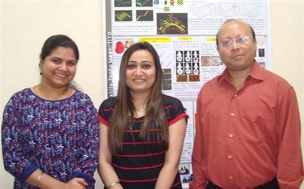 印度理工学院研究团队通过添加甲状腺激素来3D打印软骨