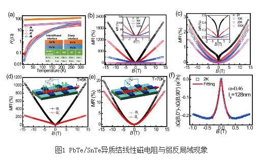 拓扑材料的电输运理论研究进展
