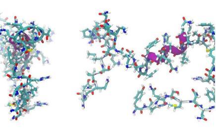 抗生物膜肽用于治疗细菌感染