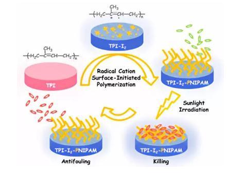 """一种利用阳离子自由基作为引发剂构建了光热转换触发的""""杀菌释菌""""系统"""
