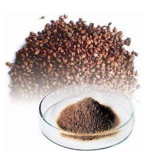 葡萄籽真的抗氧化、抗癌吗?