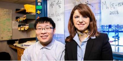 新的锰基催化剂可以改变药物分子的结构