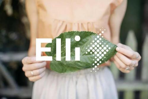 大众汽车建立Elli集团,以专注于提供电力和充电解决方案