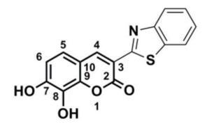 儿茶酚邻位甲基转移酶:一种决定维生素E降低还是增加患癌症风险的基因