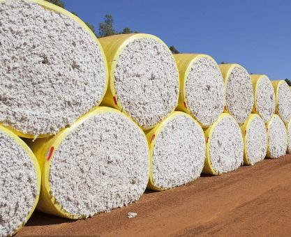 各种用途的纱线对使用原棉质量要求