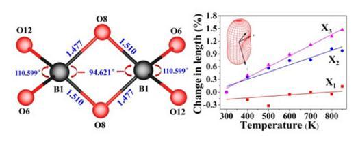 常压下制备出的具有稳定BO4共边连接构型的硼酸盐晶体