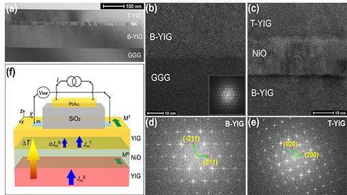 基于新型磁子结YIG/NiO/YIG的磁子阀和磁子结等磁子型元器件