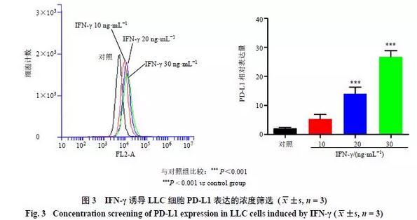 人参皂苷Rg3影响PD-L1表达的作用机制研究进展