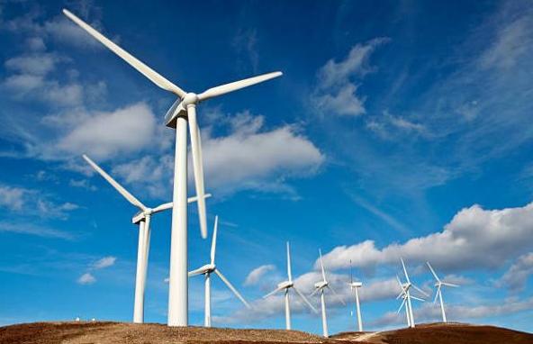 两家风电公司净利超10亿元 17家预计净利过亿元