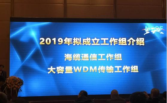 NGOF新增两大工作组:海缆通信与大容量WDM传输