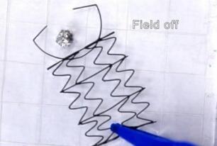 北卡罗来纳州立大学研究人员开发出3D打印弹性网状物