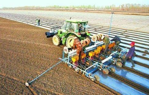 未来农村可发展的项目有哪些?中国未来农村如何发展