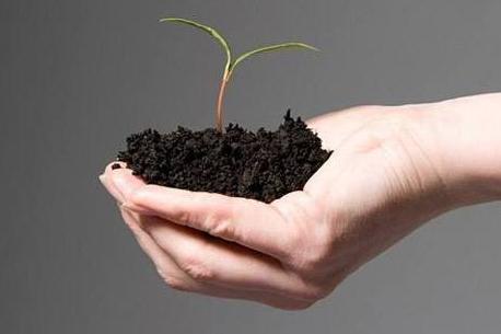 2018年土壤修复行业发展评述和2019年发展展望