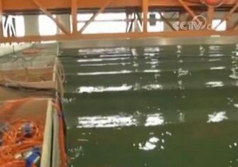 悬浮隧道工程技术研究开展水弹性整体物理模型首次试验