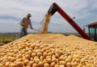 美国产大豆经欧盟批准用于生产生物燃料,有望促进大豆产品进口