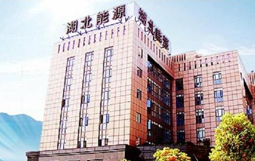 湖北能源董事长肖宏江辞职 聘任周江为总会计师