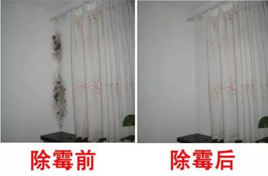 ?房屋墙壁发霉怎么办? 墙体发霉是什么原因?