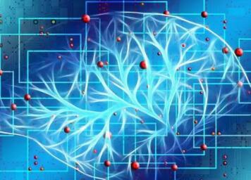 悉尼科技大学研究指出:流行的蛋白补充剂L-正缬氨酸会损伤大脑健康