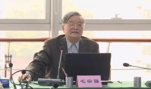 毛宗强:2030年左右中国会成为全球燃料电池最大应用市场