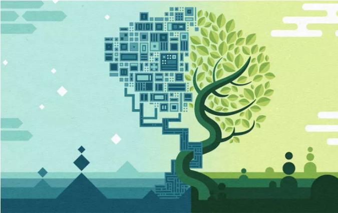 Science:人工智能的发展离不开神经科学,先天结构或是下一个方向