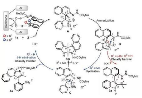 无过渡金属催化剂,可见光引发的氧化吲哚芳基化反应