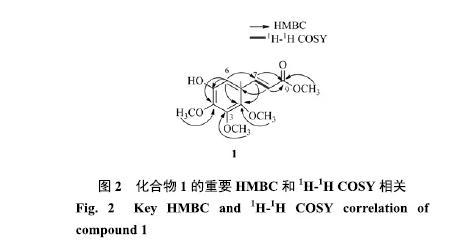 海南角果木中1个新的苯丙素类化合物