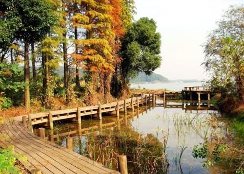 木栈道施工方法,木栈道每平米造价、尺寸、材料