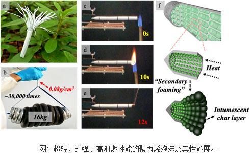 超轻、超强、高阻燃性能的聚丙烯泡沫制备方法与流程
