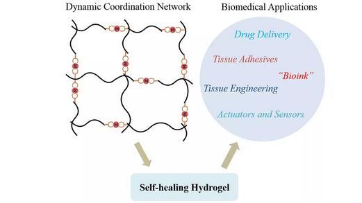 配体-金属配位化学制备自修复水凝胶的设计思路、制备方法和生物医学应用