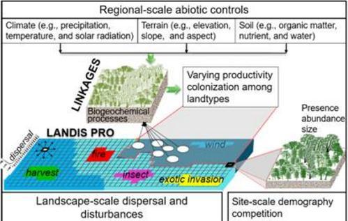 树种分布预测的模型研究进展