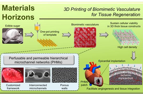 游正伟教授团队基于3D打印技术的新策略,实现了血管网络的仿生构筑