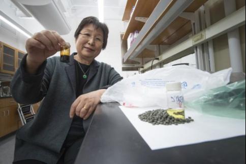 美国普渡大学将塑料废弃物转化为石脑油、清洁燃料等产品