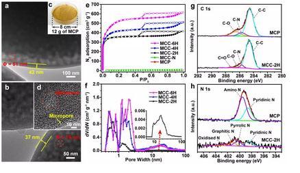 氮掺杂多腔室碳微球合成:表面活性剂诱导的限域聚合策略