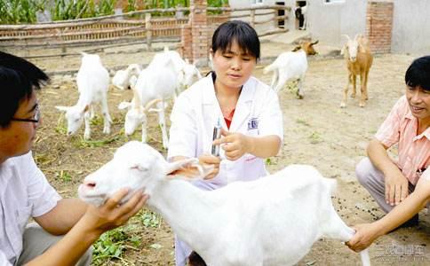 加快推进《兽医法》立法,四川省2019年畜牧兽医工作要点