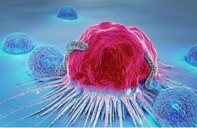 麻省理工林星程等人证实无序蛋白中存在有序特征