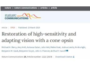 加州大学伯克利分校科学家开发出一种基因疗法,可让失明小鼠恢复视力