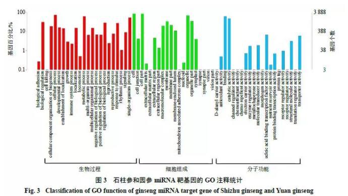 降解组测序技术对人参miRNA靶基因的分析鉴定