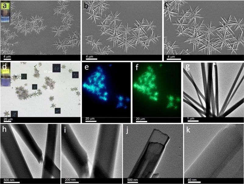 扬州大学孙燕课题组等人构建出结构、性质可调整的超分子软材料